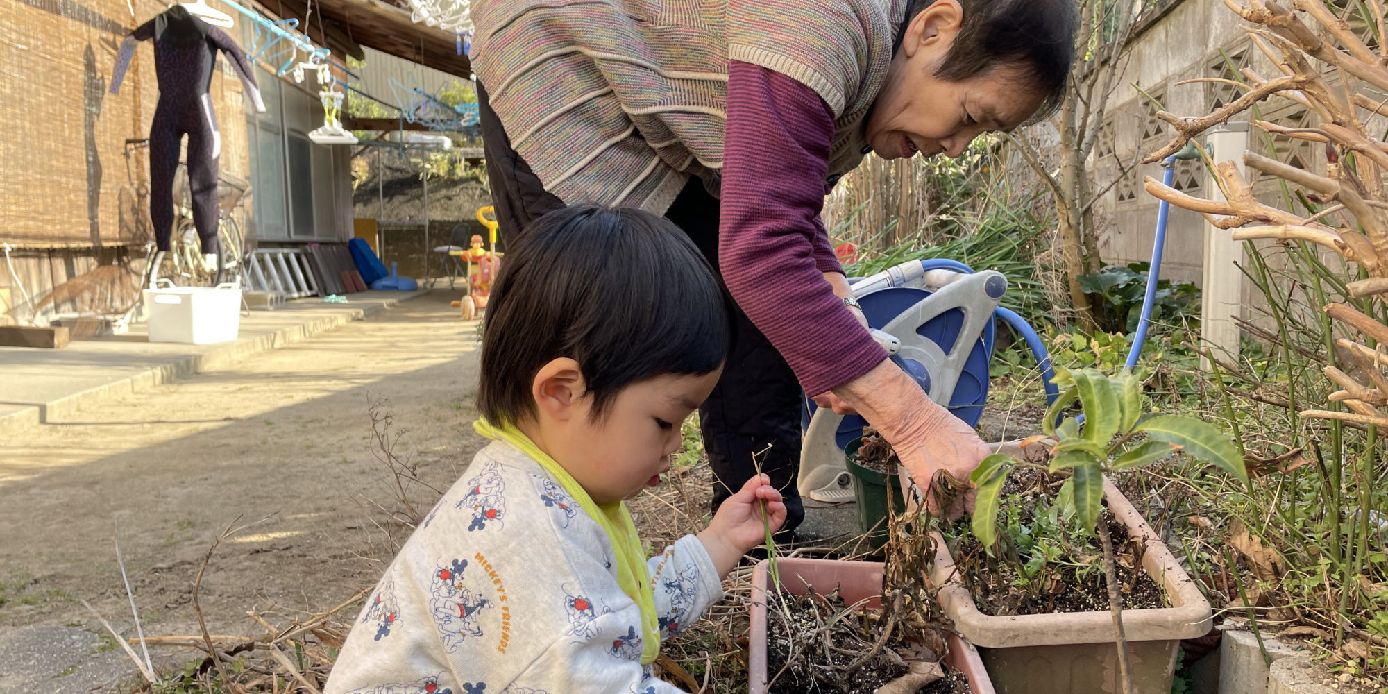 プランターに苗を植えるお婆さんと子供